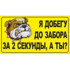 """""""Злая собака №2"""""""