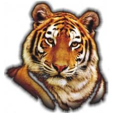 """тигр (голова)"""
