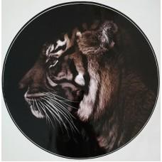 """наклейка """"Тигр (в профиль)"""""""