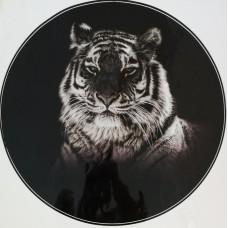 """наклейка """"Тигр (черный)"""""""