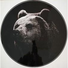 """наклейка """"Медведь (черный)"""""""