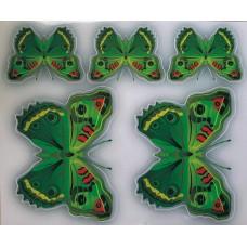 бабочки Нефрит